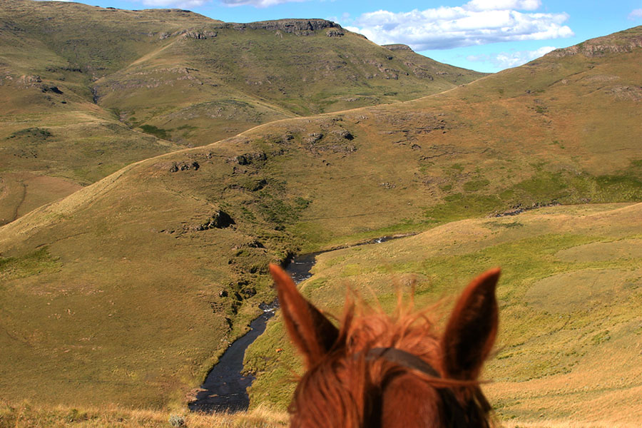 Fly fishing on Horseback to summit of the southern Drakensberg