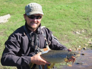 10 Drifting Rio Simpson Browns.