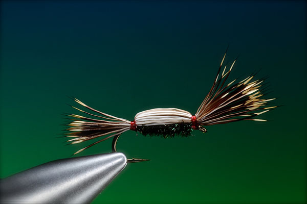 A Barry Ord Clarke fly
