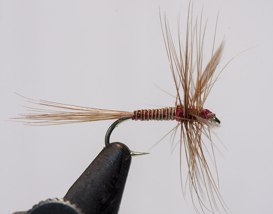 Lunn Particular-dry-fly