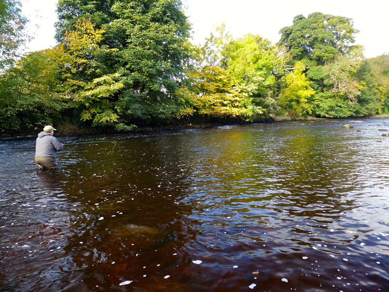 7 River Ure at Masham