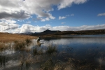 Birkhall Lake Eastern Cape