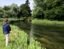 Chalkstream collection