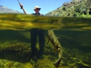 Underwater fly fishing photography (26)