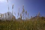 Banhoek Stellenbosch area