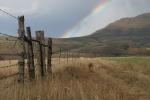 Birkhall farm