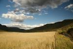 Knockwarren landscape
