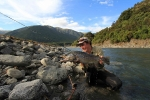 A trophy NZ brown which fell for a tiny black mayfly