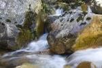 Lourens River (27)