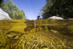 Lourens River (3)