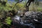 Small streams (38)
