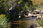 Small streams (43)