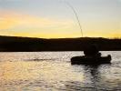 Fish at sunset