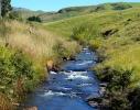 Antelope Stream Vrederus 1 (3)
