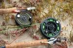 Western Cape Estuary Fly Fishing