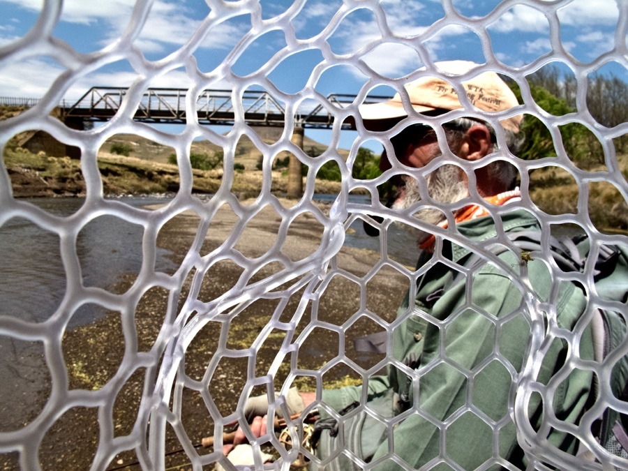 Moshesh's Ford through a net