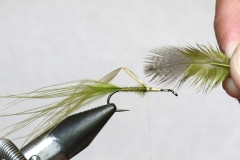Gordon Van der Spuy's tying tips Part 4 – Legs