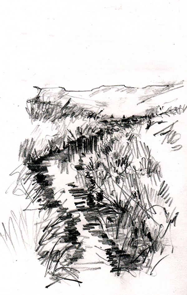 Field sketch of a stream