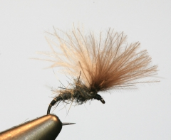 CDC – Part 2 from Gordon Van der Spuy's tying tips series – Adaptability, tying a useful Shuttlecock pattern and How to make a Plan!