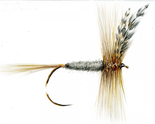 Colour pencil Adams dry fly