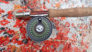 MY 19 OCTOBER 2014 FLY FISHING NEWSLETTER