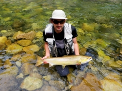 Extracts from my 22 February Fly Fishing Newsletter