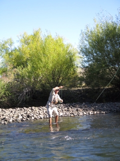 Fly fishing Argentina and Chile on a shoestring budget