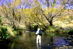A MEDLEY OF IMAGES ON FLY FISHING VREDERUS AND SURROUNDING STREAMS