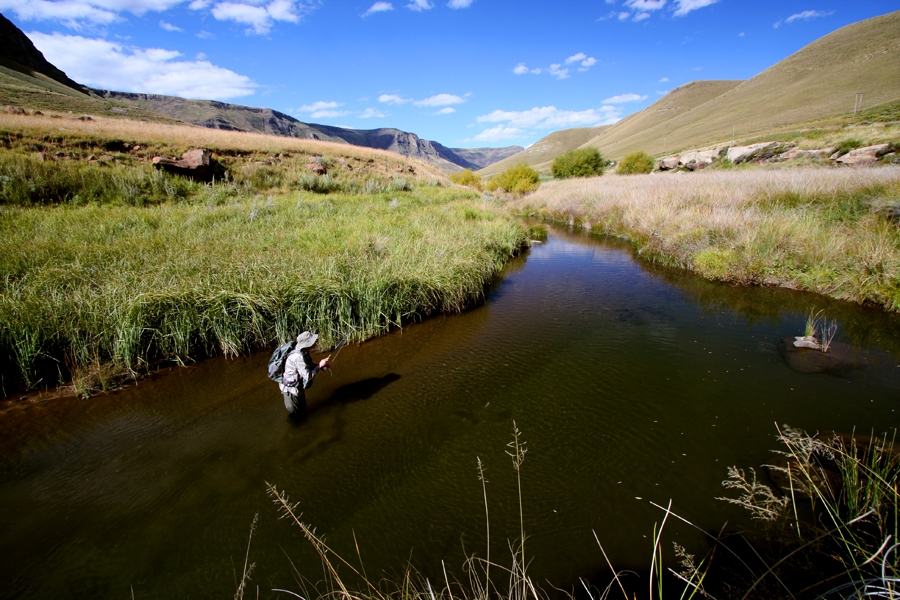 Coldbrook stream Eastern Cape 27