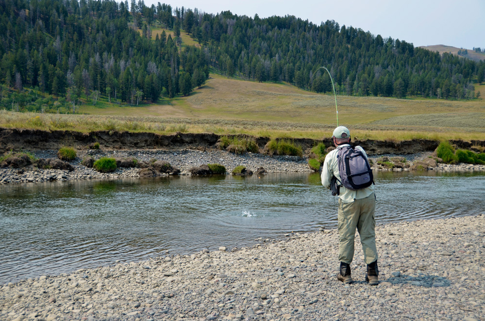 12. Casting into a run. Lamar River in Yellowstone National Park
