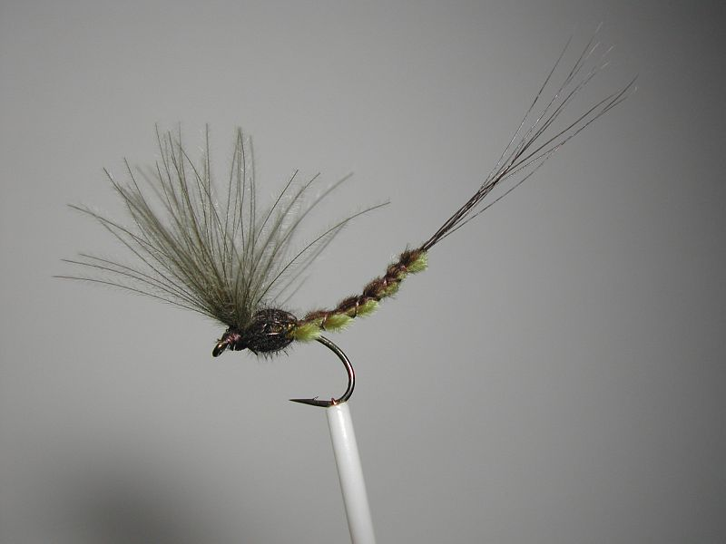 Dry_fly_extended_body_Puff