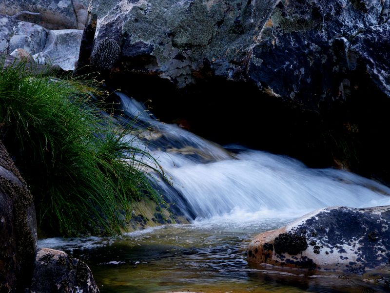 Jan_du_Toits_River_Western_Cape_5