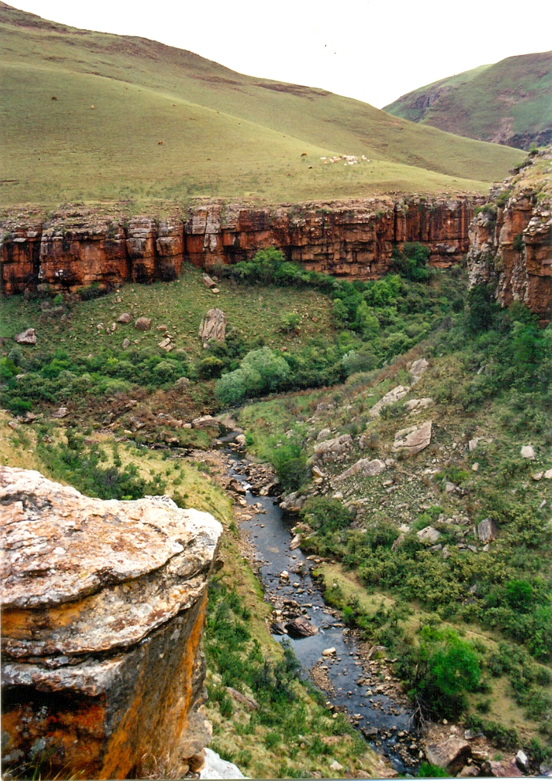 Swith_valley_looking_upstream