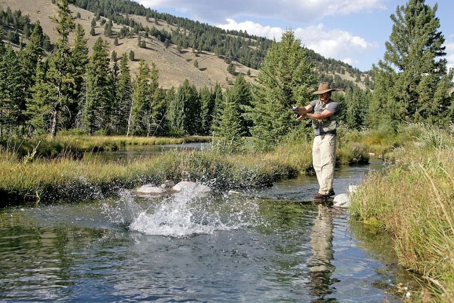 Tributary_of_the_Gallatin_River_Montana_1