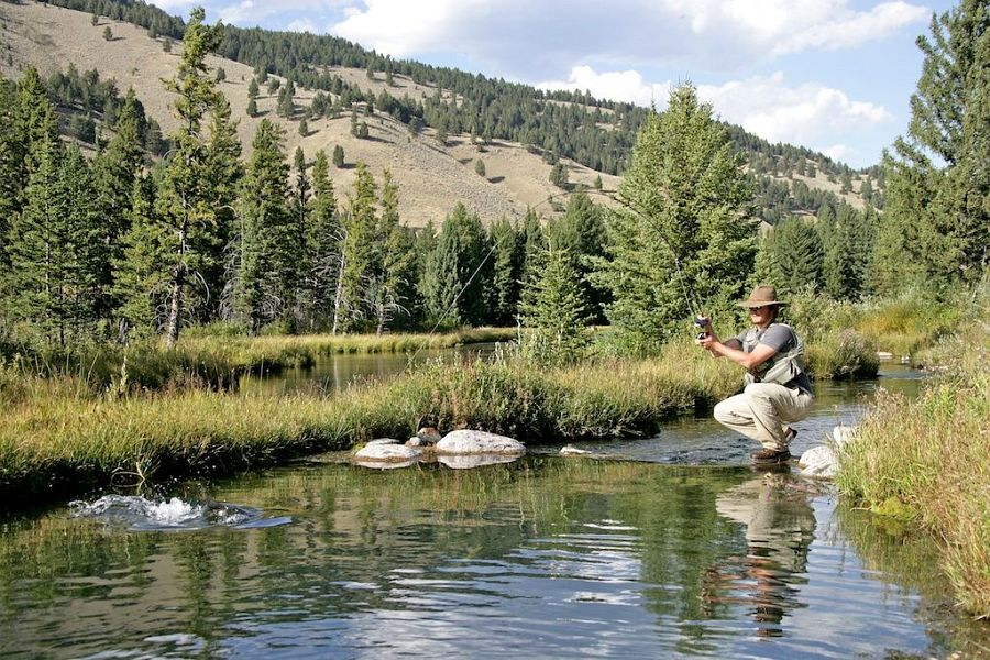 Tributary_of_the_Gallatin_River_Montana_2